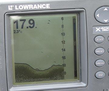 В ложбине стоит мелкий судачок, 300 — 400 граммов.